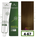 Schwarzkopf - Tinte ESSENSITY Sin Amoniaco Roble 4-67 Castaño Medio Marrón Cobrizo 60 ml