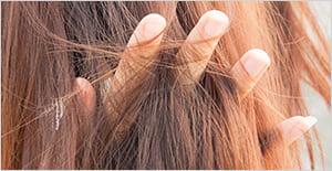 bifases-productos-peluqueria
