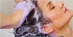 champús productos de peluquería