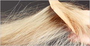 desrizantes-permanentes-productos-peluqueria
