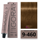Schwarzkopf - Tinte Igora Royal Absolutes 9/460 Rubio Muy Claro Beige Chocolate 60 ml