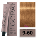 Schwarzkopf - Tinte Igora Royal Absolutes 9/60 Rubio Muy Claro Marrón Natural 60 ml
